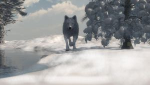 Wolfwinter2 by fractal2cry
