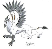 gryphon white by Asenath-Nightroad