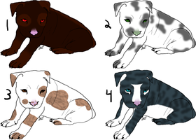 Pitbull Pointables by BrokenWingAdopts