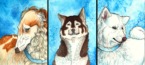 Russian Dogs OC ACEO Tryptich by Domisea