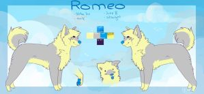 Romeo reference sheet by coffaefox