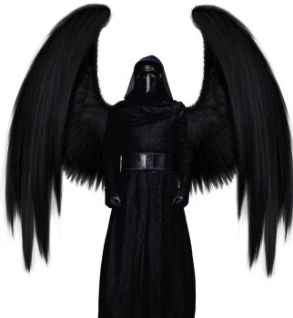Winged Kylo Ren by Floralisole