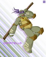 Point commisstion - 2k12 Donatello by mukuto