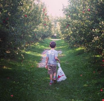 No apples please. by GeneveMarie