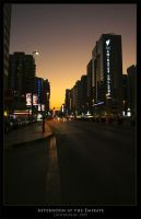 Afternoon at the Emirate by lightronin