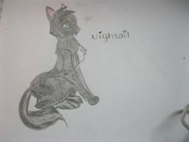 Nightail - Colored by animeVampire-cat