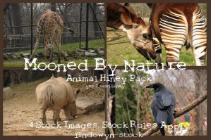 Animal Hiney Pack by lindowyn-stock
