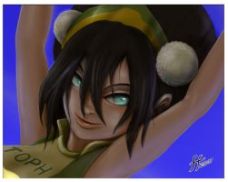 VolleyBall Toph WP by 14-bis
