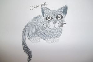 Cinderpelt by dawnflower8