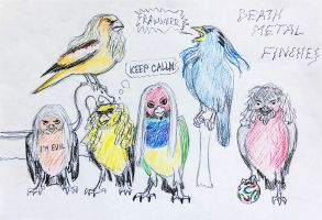 6 Death Metal Finches by lapis-lazuri