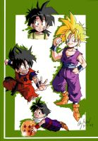 THE MANY FACES OF GOHAN by Sandra-delaIglesia