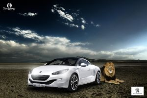 Be the KING drive Peugeot by AleksandarN