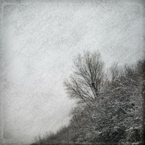 Winter by Amalus