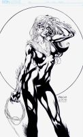 Black Cat: David Finch by boysicat