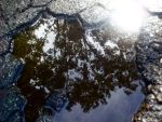 Puddle Reflection by translucentstripes