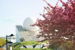 Spring Time - Futuroscope by AnaRosaPhotography