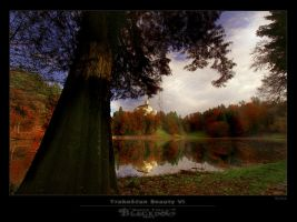 Trakoscan Beauty VI by BlackdoG-MT