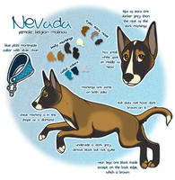 Back to Nevada by sotee