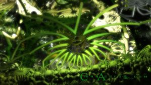 CannAssess 2 - updated by tobaal
