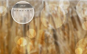 Desktop Calendar Photo July 2013 by Lavinia1988