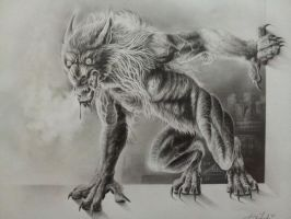 Werewolf graphite drawing by twyliteskyz
