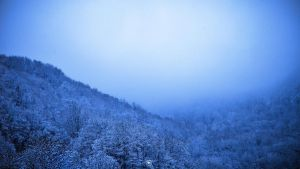 Winter blues by lubbo