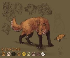 Kiakime reference sheet 2010 by Runeme