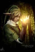 The Legend of Zelda by AtrociousFairyTale