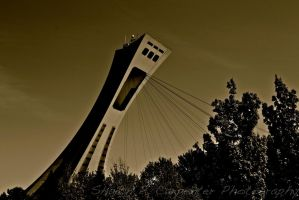 Pillar Rising Above the Trees by spcbrass