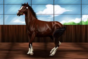 Grand Prix Liberty Entry by Equinera