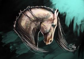 Digital Painting/Sketching Demo by shilohs