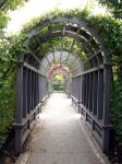 Tunnel by two-ladies-stocks