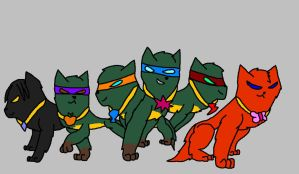 TMNT Elements of Harmony by BerrystarLover
