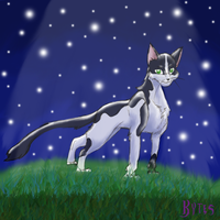 Young Tallstar by Kytes by StarClan