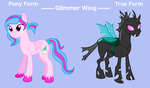 Glimmer Wing: Character Design by wolfpride228
