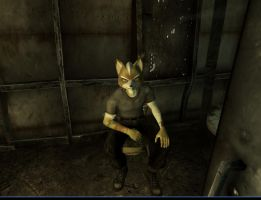 Fallout 3 Fox McCloud by MikeyTheFox