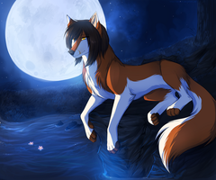 Midnight Scenery by Ronkeyroo