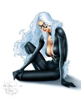 Miller's Black Cat - Colors by TracyWong