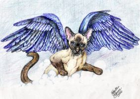 Winged Siamese Gift by HeatherElmore