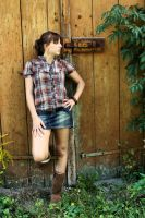 country - stock. by ramona-stock