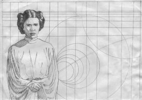 Princess Leia 2 by ssava