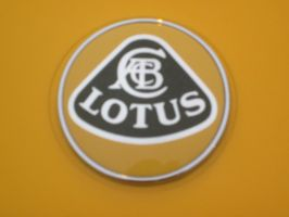 lotus logo by mburleigh8