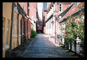 Alley of Denmark by GraphicWeirdo