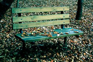 Lonley Autumn by theblindalley