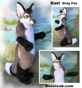 Kael -Gray Fox by LilleahWest