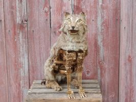 Creepy Steampunk Bobcat Wood Taxidermy by steamjunker