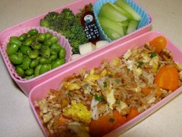 Fried Rice and Garden Fare 2 by LadySiha