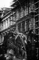 City lion. by Phototubby