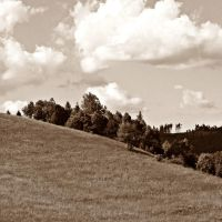 landscape in sepia by mirop