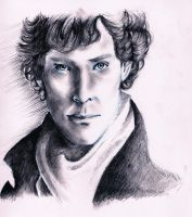 Sherlock Portrait by BlueyyKnight